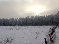 Winter Field (natural)